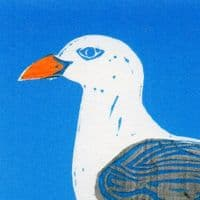Sussex Seagull Coastal Card | Sophie Mutter